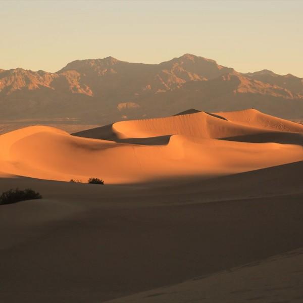 黄金に光る砂漠 デスバレー